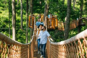 Anakeesta Tree Canopy Walk