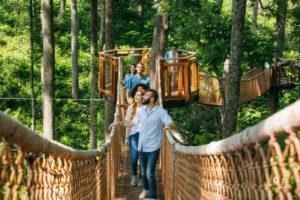 Anakeesta Tree Canopy Walk